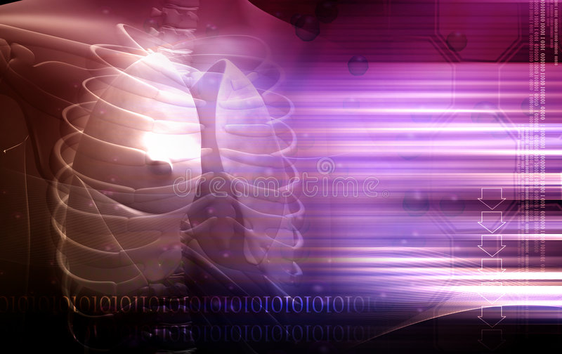 Menselijk lichaam en longen vector illustratie
