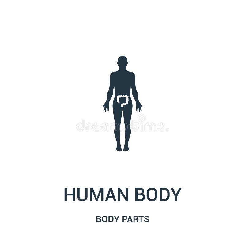 menselijk lichaamssilhouet met hoogtepunt op de vector van het dikke darmenpictogram van lichaamsdeleninzameling Het dunne silhou stock illustratie