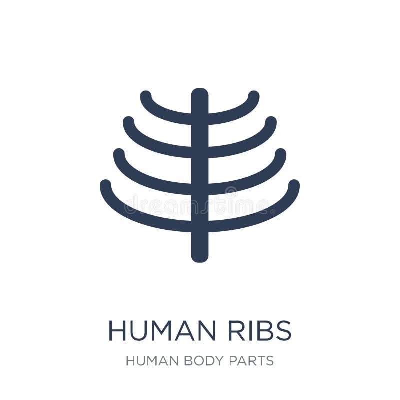 Menselijk ribbenpictogram In vlak vector Menselijk Ribbenpictogram op witte bac vector illustratie