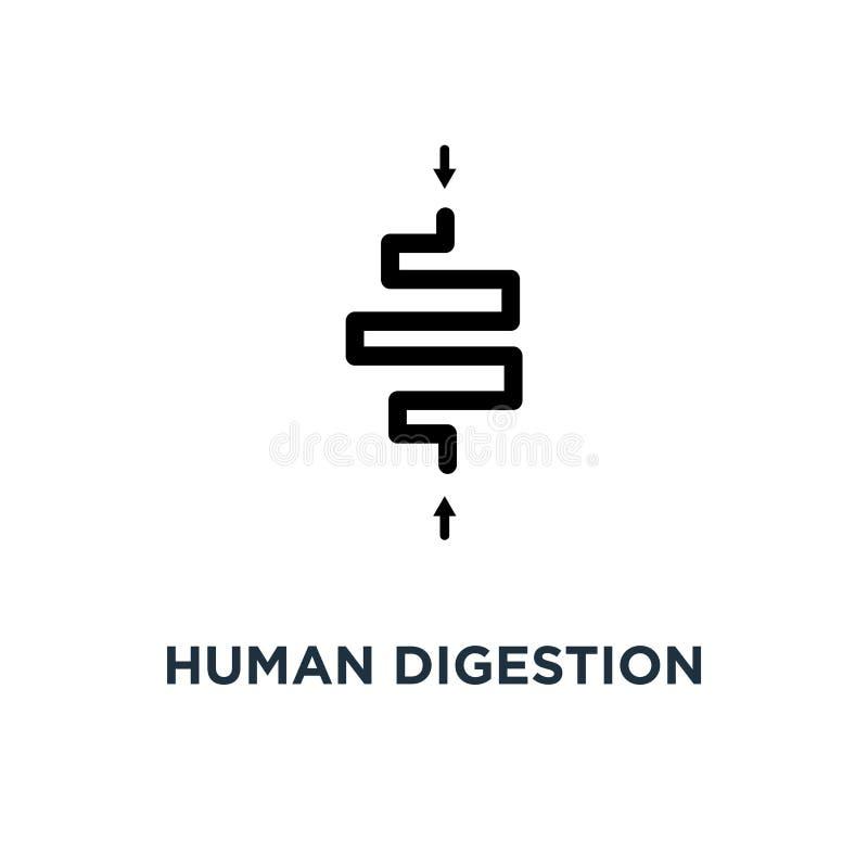 Menselijk spijsverteringspictogram Eenvoudige elementenillustratie Menselijke digesti royalty-vrije illustratie