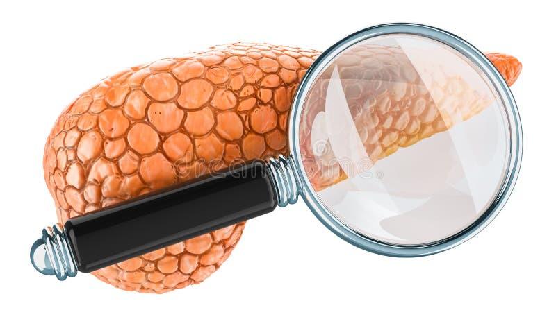 Menselijke alvleesklier met vergrootglas Onderzoek en diagnose van alvleesklier- concept, het 3D teruggeven stock illustratie
