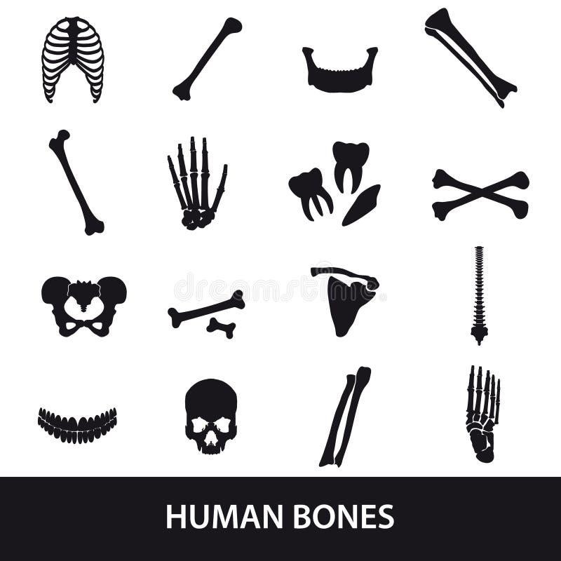 Menselijke beenderenreeks pictogrammen stock illustratie