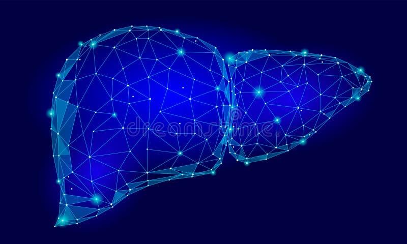 Menselijke de Driehoeks Lage Poly van het Lever Interne Orgaan Verbonden van de de technologie 3d modelgeneeskunde van de punten  royalty-vrije illustratie