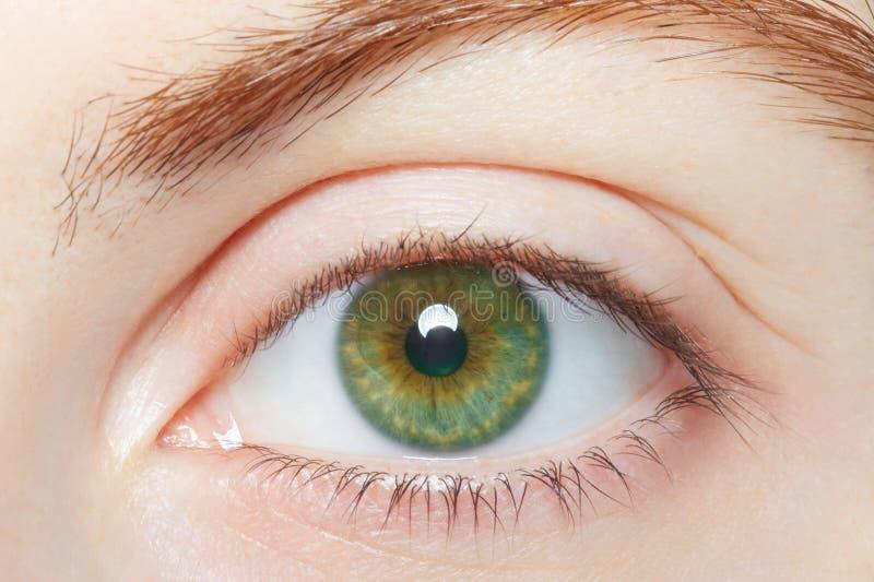 Menselijke, groene gezonde oogmacro royalty-vrije stock afbeelding