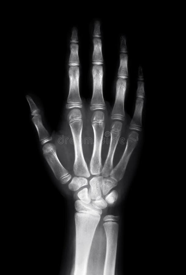 Menselijke hand stock afbeeldingen