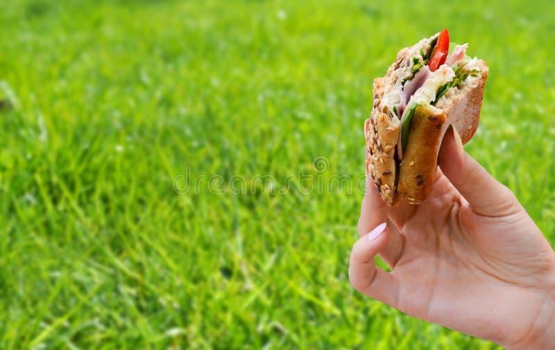 Menselijke hand die een gezonde sandwich op picknick houden stock foto's
