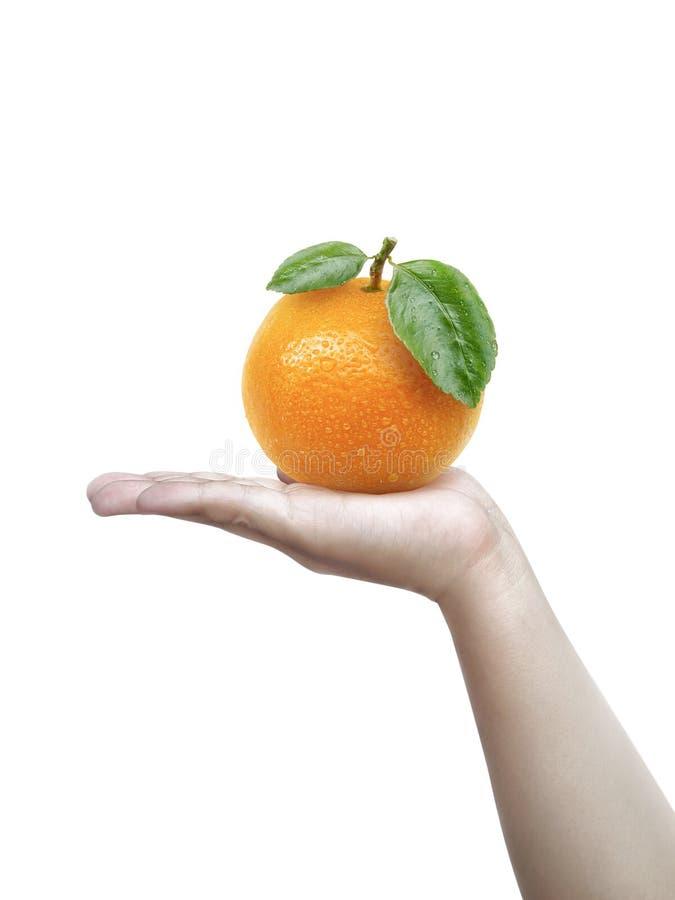 Menselijke hand die die a van sinaasappel houden op een witte achtergrond wordt geïsoleerd stock foto