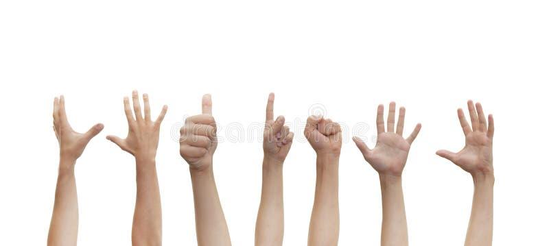 Download Menselijke handen stock afbeelding. Afbeelding bestaande uit symbool - 10778037