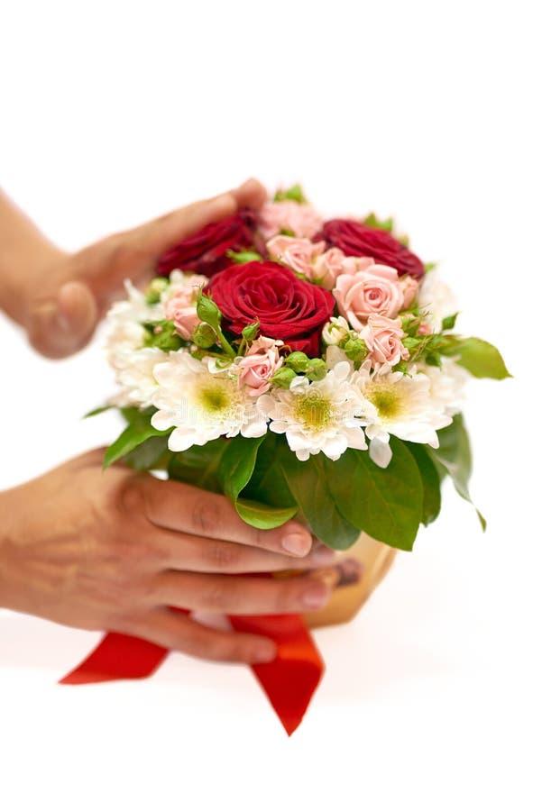 Menselijke handen die een pot met bloemen bevinden zich stock afbeelding
