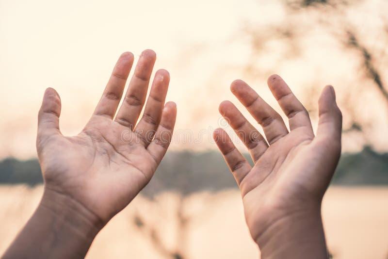 Menselijke handen die op aard tijdens zonsondergang bidden stock afbeelding