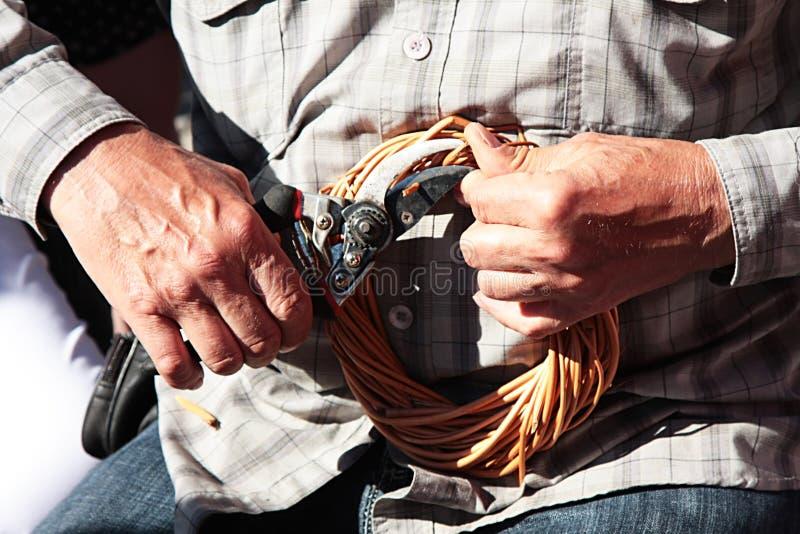 Menselijke handen die rijs vlechten royalty-vrije stock afbeelding