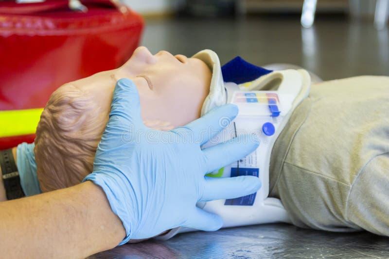 Menselijke handenstabilisatie de hals van een medische opleidingsmarionet royalty-vrije stock afbeeldingen