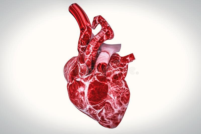 Menselijke hart en DNA-van de conceptenhartkwaal en gezondheid behandelingen stock illustratie