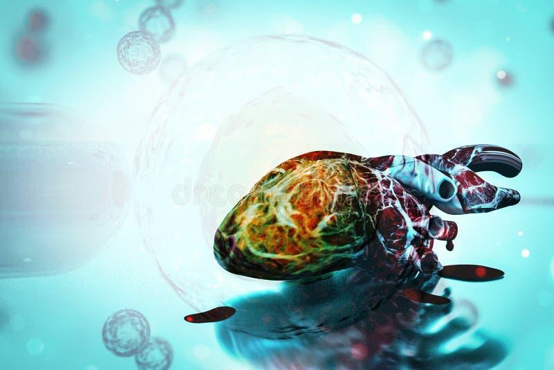 Menselijke hart en DNA-van de conceptenhartkwaal en gezondheid behandelingen vector illustratie