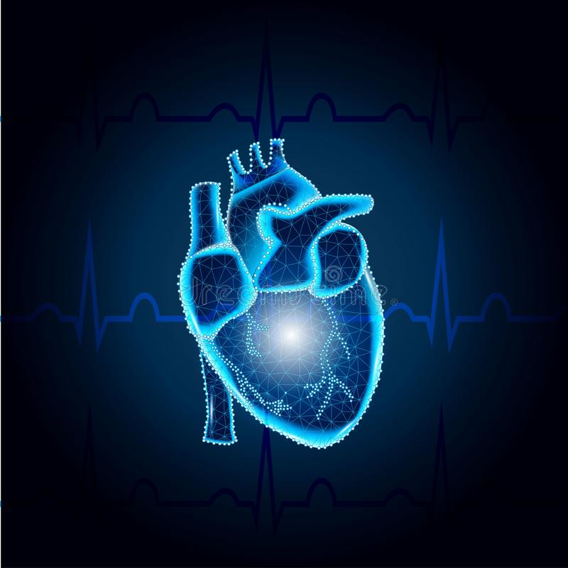 Menselijke hartveelhoek op blauw netwerk 1 van ECG stock illustratie