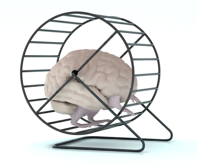 Menselijke hersenen met armen en benen in hamsterwiel royalty-vrije illustratie