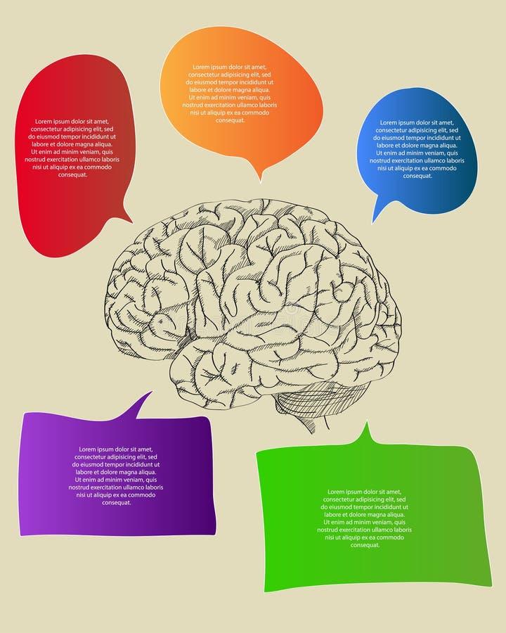 Menselijke Hersenen met Infographic-Diagram voor Bedrijfs en Technologie omhoog Geschetst Concepten Vectoroverzicht royalty-vrije illustratie