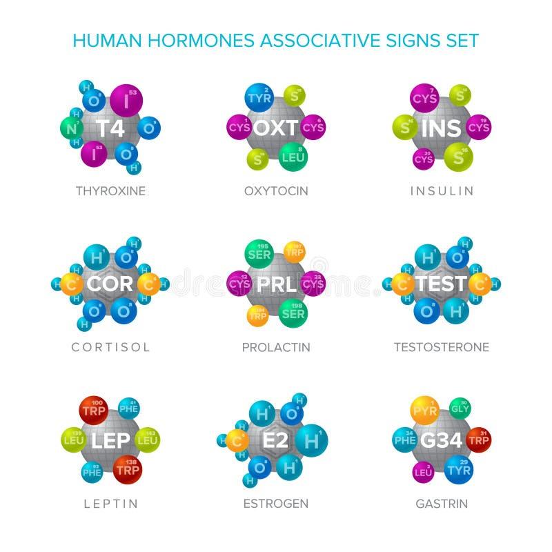 Menselijke hormonen vectortekens met associatieve moleculaire geplaatste structuren stock illustratie