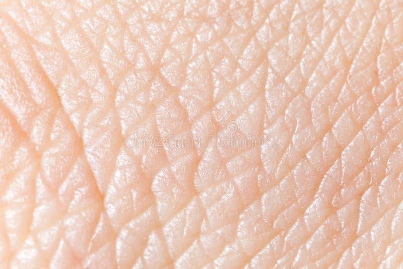 Menselijke huid royalty-vrije stock afbeeldingen