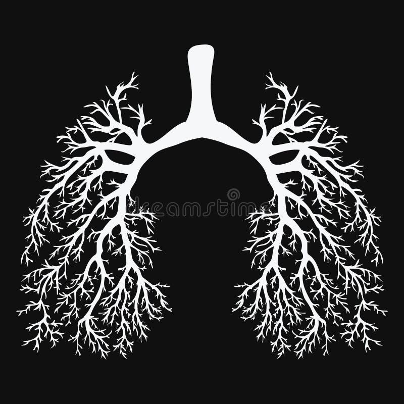 Menselijke Longen Ademhalingssysteem Gezonde Longen Licht in de vorm van een boom Het zwart-witte trekken op een bord vector illustratie