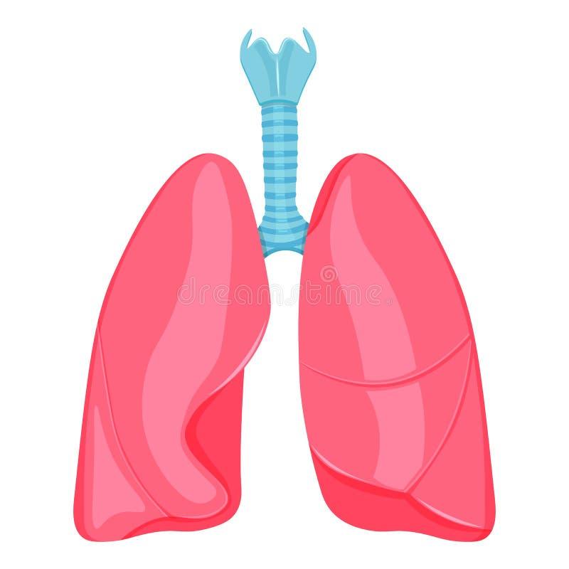 Menselijke longen vectordieillustratie op witte achtergrond wordt geïsoleerd stock illustratie