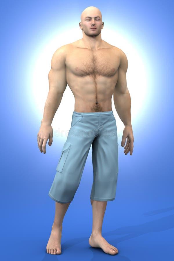 Menselijke mannelijke Anatomie stock illustratie
