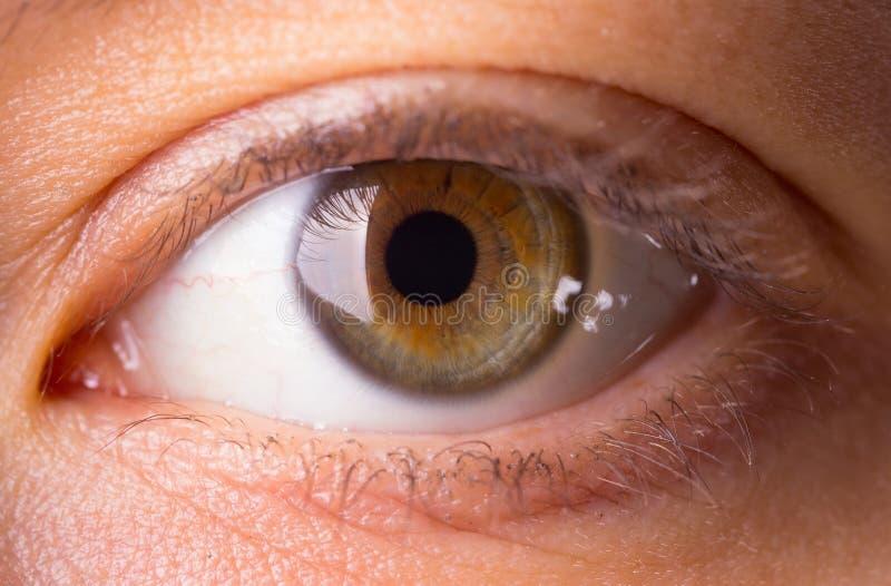 Menselijke oogclose-up royalty-vrije stock afbeelding
