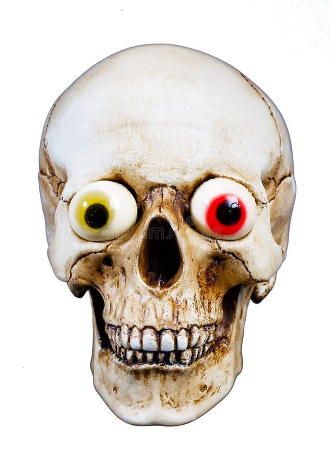 Menselijke schedel met grappige ogen stock foto
