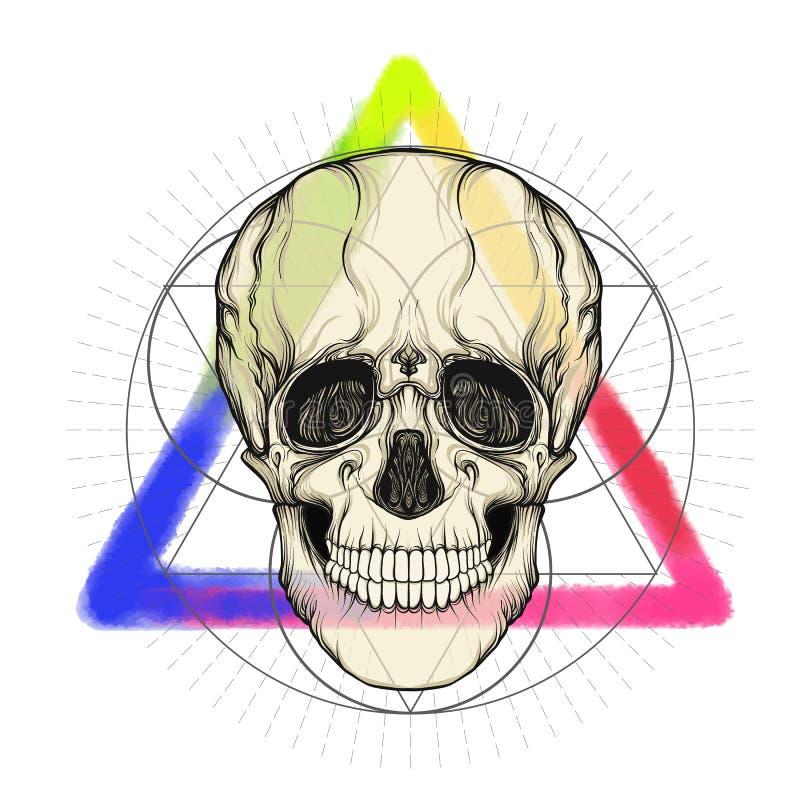 Menselijke schedel op de de driehoeksachtergrond van de waterverfkleur royalty-vrije illustratie