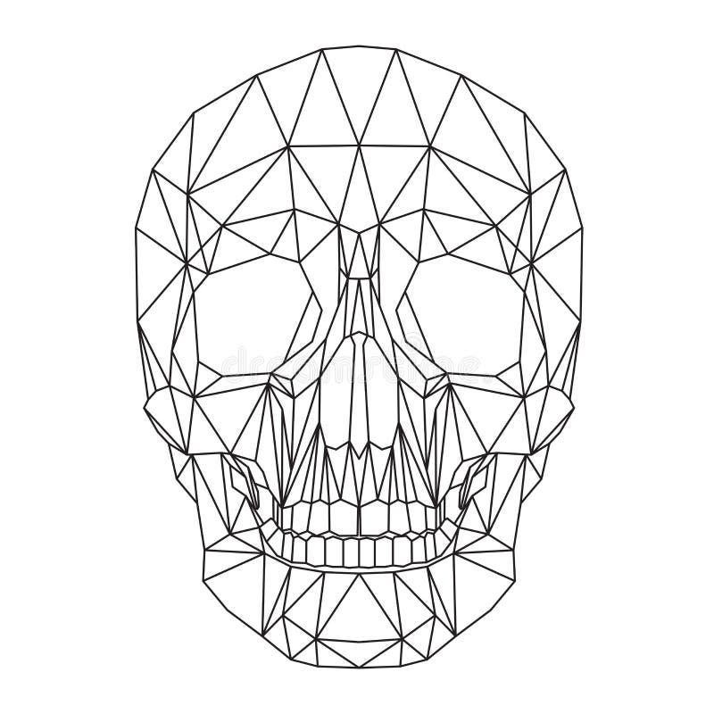Menselijke schedel, schedel, hoofd, veelhoekgrafiek stock afbeeldingen