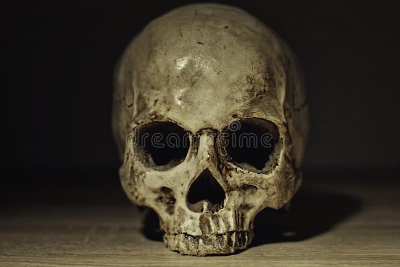 Menselijke schedel in schemerige lichte close-upfoto stock afbeeldingen
