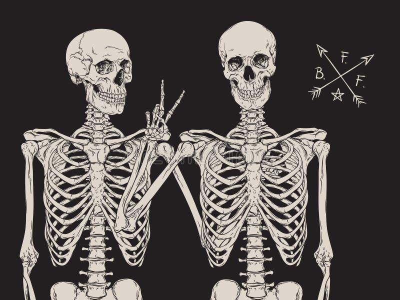 Menselijke skeletten beste vrienden die over zwarte vector stellen als achtergrond royalty-vrije illustratie