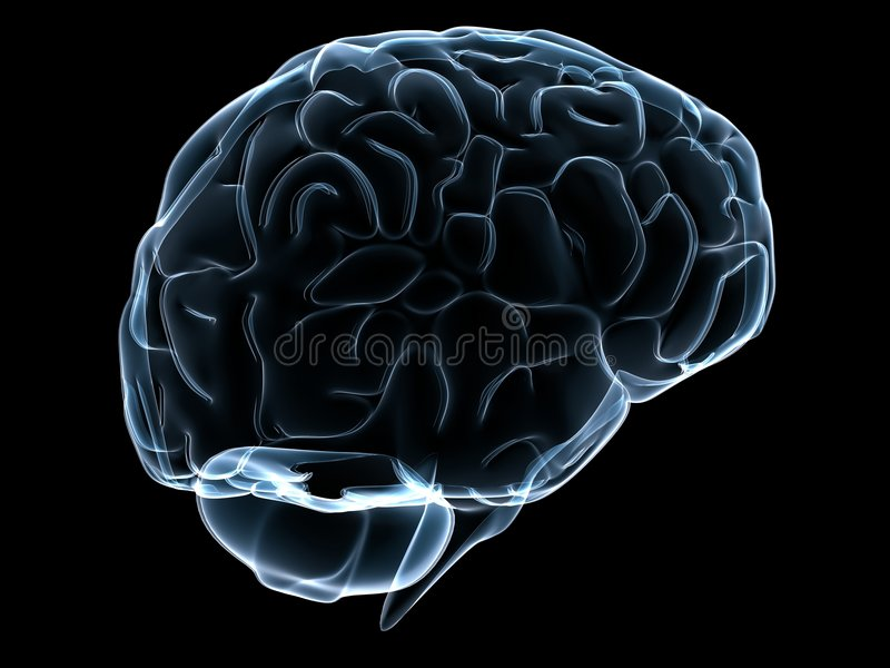 Menselijke transparante hersenen vector illustratie