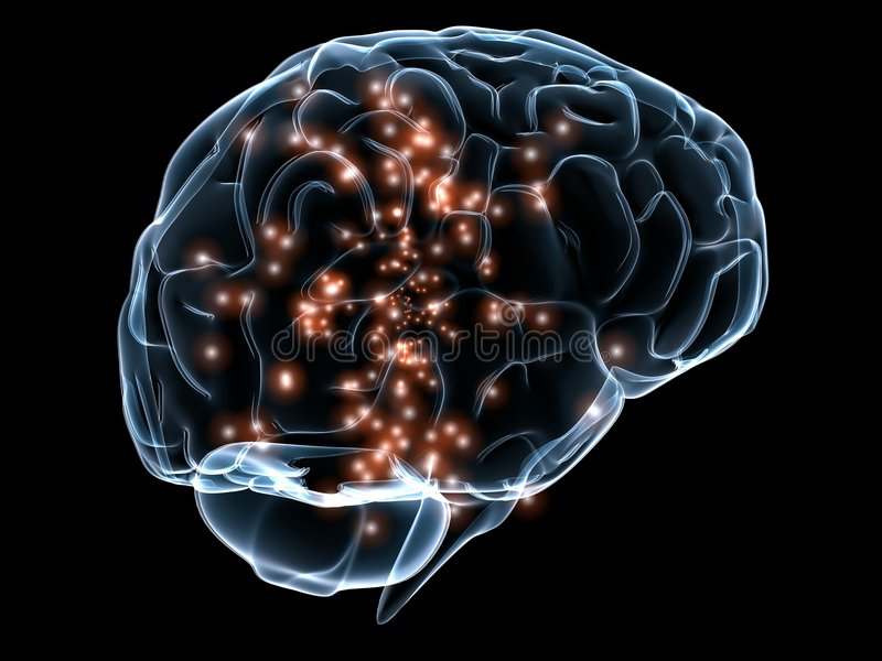 Menselijke transparante hersenen royalty-vrije illustratie