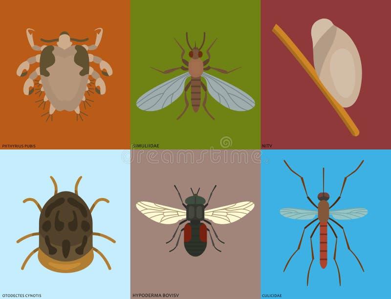 Menselijke van het de huisvestingsongedierte van huidparasieten vector van de de insectenziekte parasitische gevaarlijke de besme stock illustratie