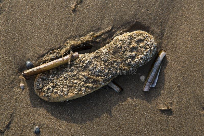 Menselijke verontreiniging van het overzees en de oceanen royalty-vrije stock afbeeldingen