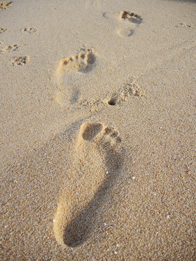 Menselijke voetafdruk op zand royalty-vrije stock foto's