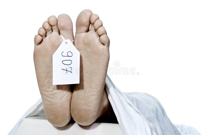 Menselijke voeten stock afbeeldingen
