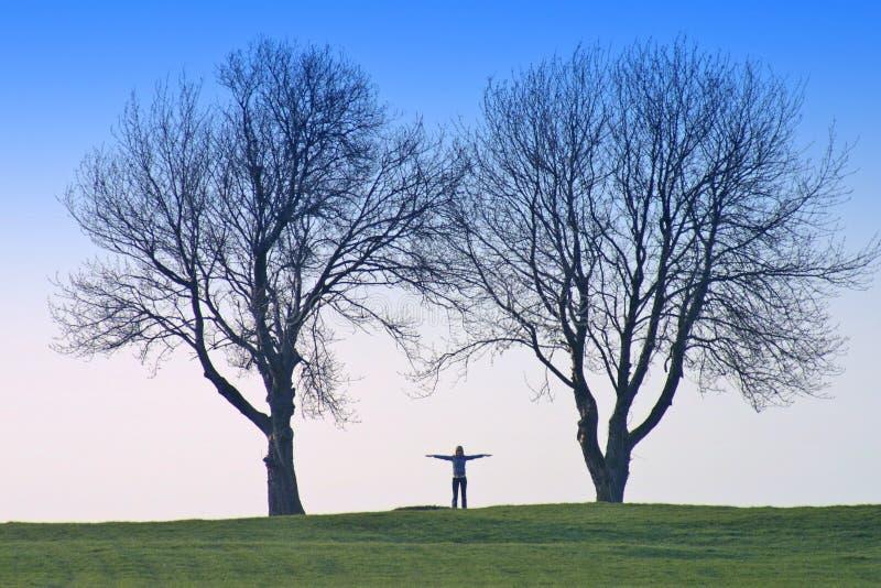 Menselijke Vorm En Bomen Stock Afbeeldingen