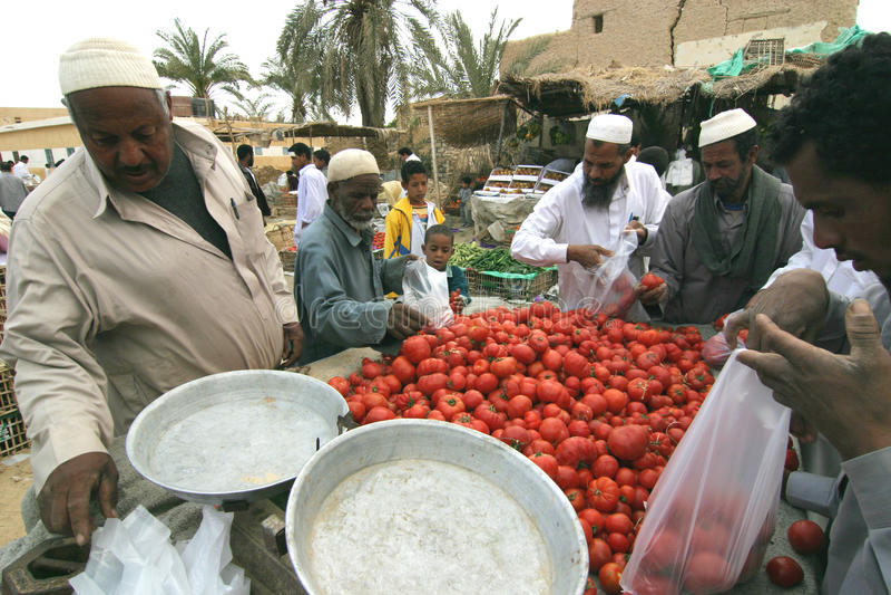 Markt bij de oase van Siwa, Egypte. stock fotografie