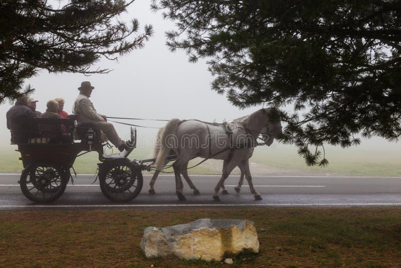 Mensen in de wagen door een paard wordt getrokken dat stock foto