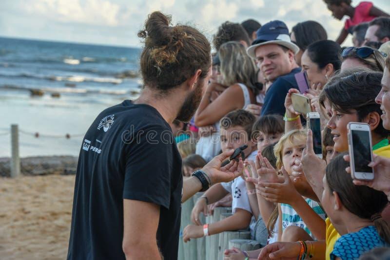 Mensen die babyschildpadden op Tamar-project in Praia do Forte in Brazili? waarnemen royalty-vrije stock afbeelding