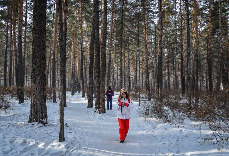 Mensen die bij diep bos in de winter lopen stock fotografie
