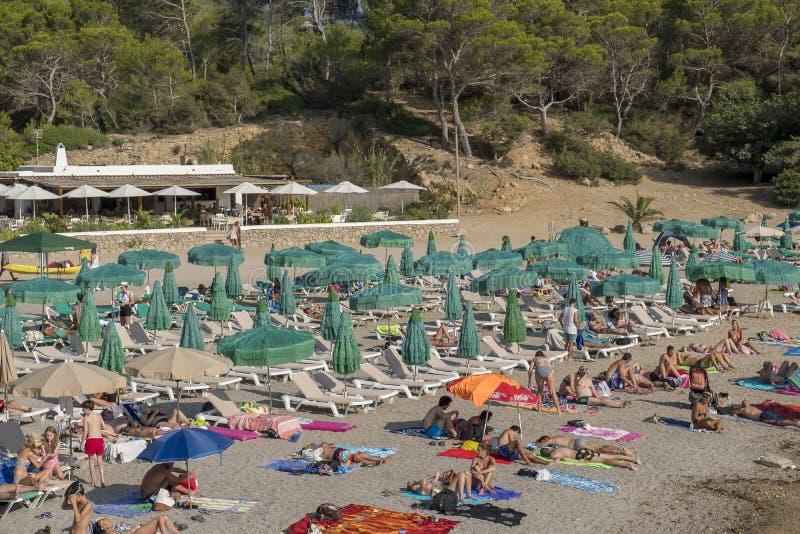 Mensen die bij het strand zonnebaden stock foto
