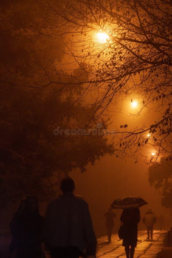 Mensen die bij nacht in de mist lopen stock foto