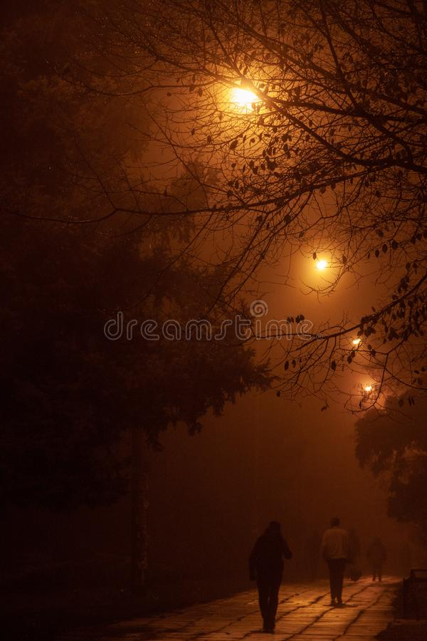 Mensen die bij nacht in de mist lopen royalty-vrije stock foto