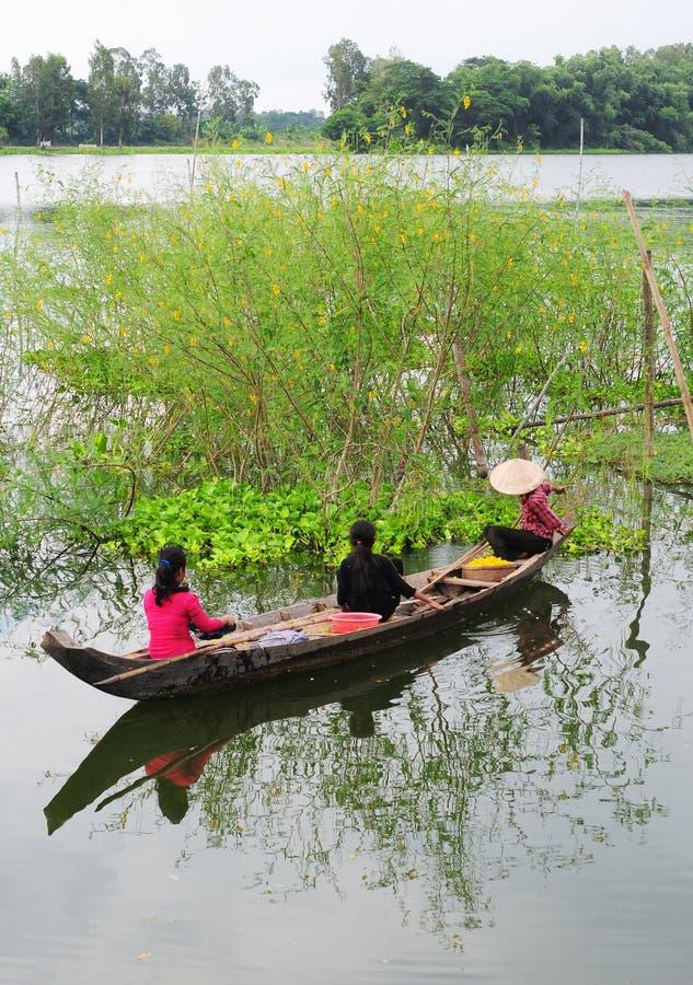 Mensen die de houten boot op meer in Phuyen, Vietnam roeien royalty-vrije stock afbeeldingen