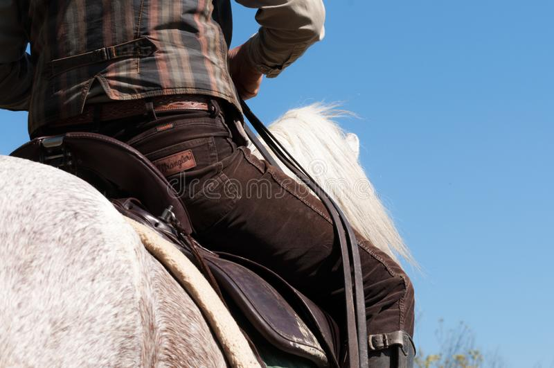 Mensen die een wit paard berijden Lage hoekmening royalty-vrije stock foto