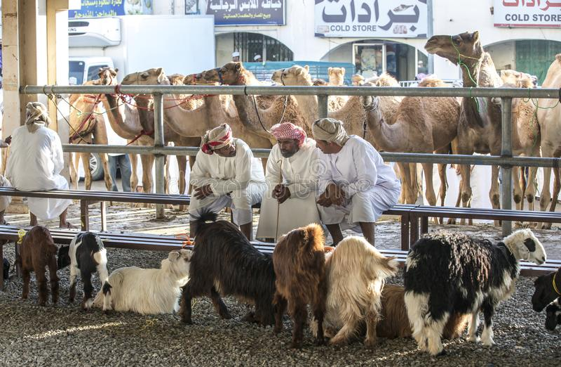 Mensen die en geiten kopen verkopen bij een markt stock foto