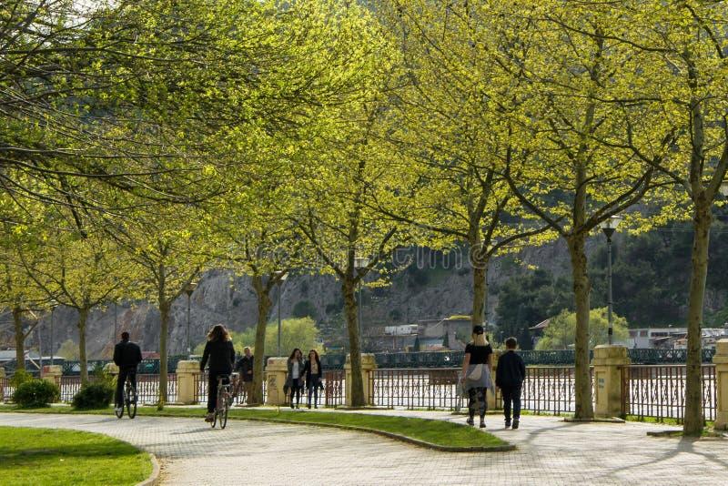 Mensen die fiets in het stadspark berijden royalty-vrije stock foto's
